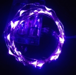 LED Seed Light Purple